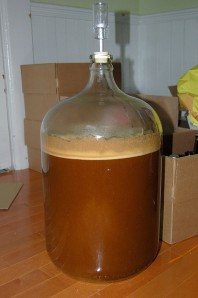 Fermenting in a Carboy